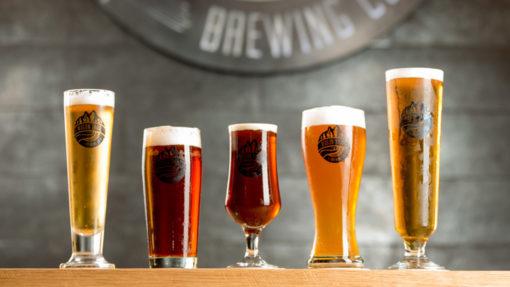 Anura-Wagon-Trail-Brewing-craft-beer