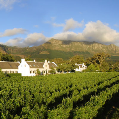 capetown-steenberg-estate