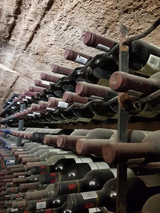 mature-old-wine-tasting-tour