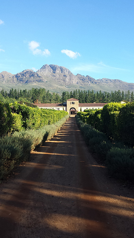 pretty-entrance-to-wine-estate