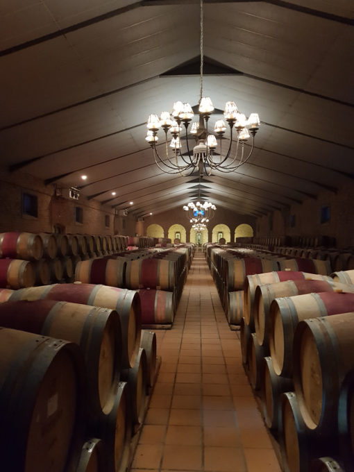 wine-cellar-tour-light-tasting