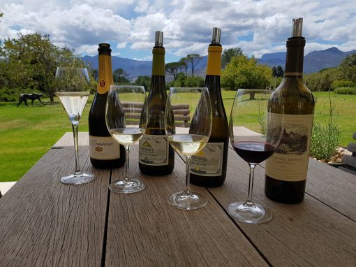 wine-tasting-tour-tsiba